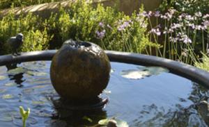 Garden-Blog-png
