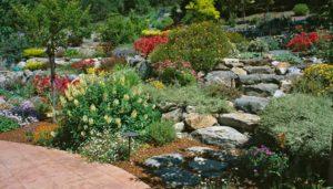 gardenworks_julyblog