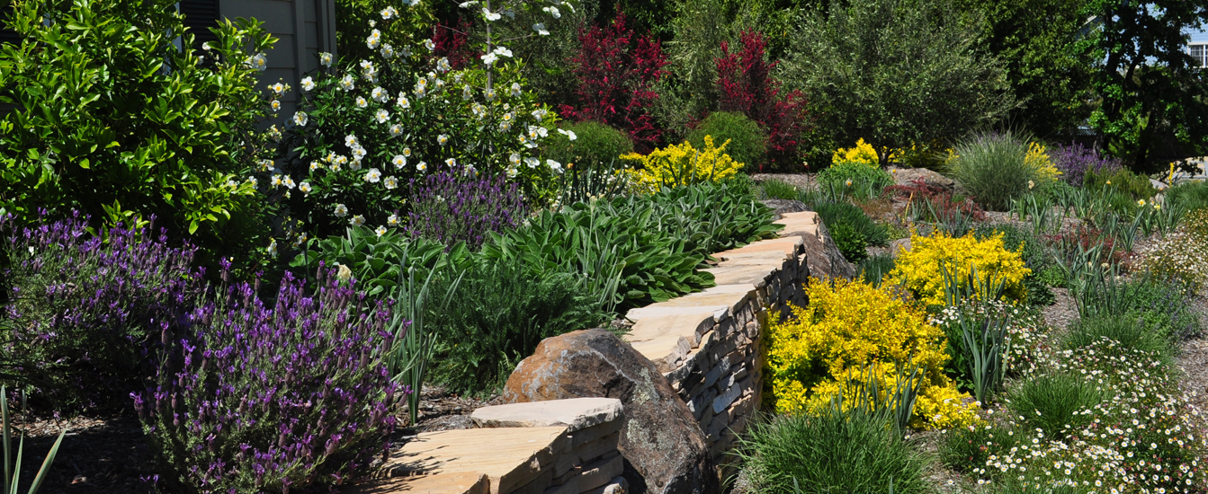 LANDSCAPING EXPERTS IN SONOMA COUNTY