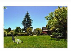 gardenworks-santa-rosa-green-landscaping-300x231 (1)