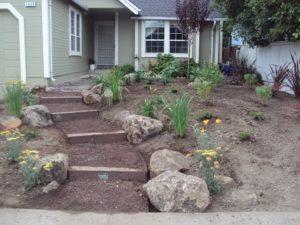 11-Plants-installed
