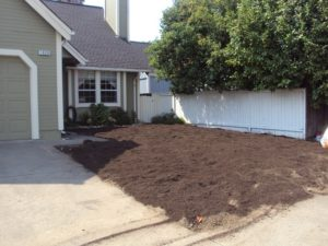 6-Compost-spread