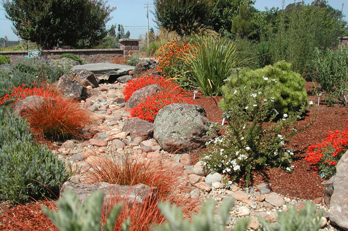 water wise and water conservation a Gardenworks mission