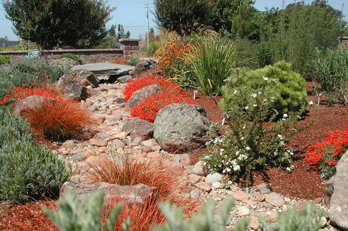 Water Wise Wine Country Garden Gardenworks Inc Landscape