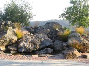 Sonoma County Landscapers